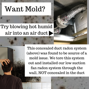 Fort Myers Radon vs mold